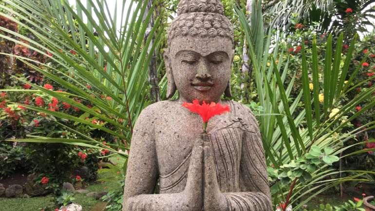 Silent Retreat with Meditation and Satsang